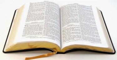biblia-america